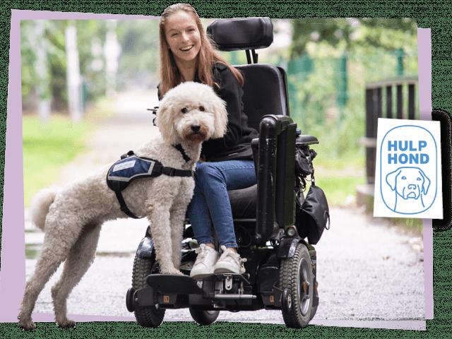 Gio Coffee Social Impact Hulp Hond Nederland